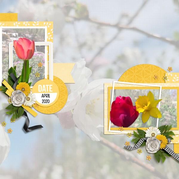 April-20-Signs-of-SpringWEB.jpg