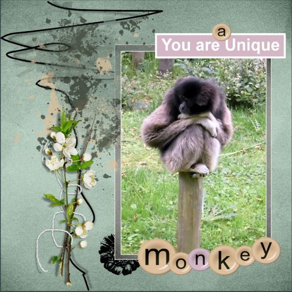 April 2020 , you'r a Unique monkey.jpg