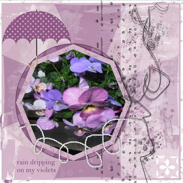 April 2020 -rain dripping on my violets.jpg