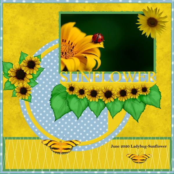 June 2020 Ladybug-Sunflower.jpg
