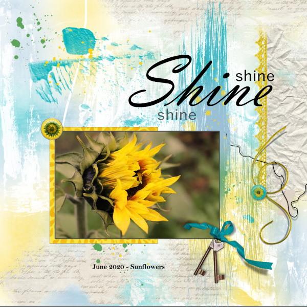 June 2020 - Sunflowers..jpg