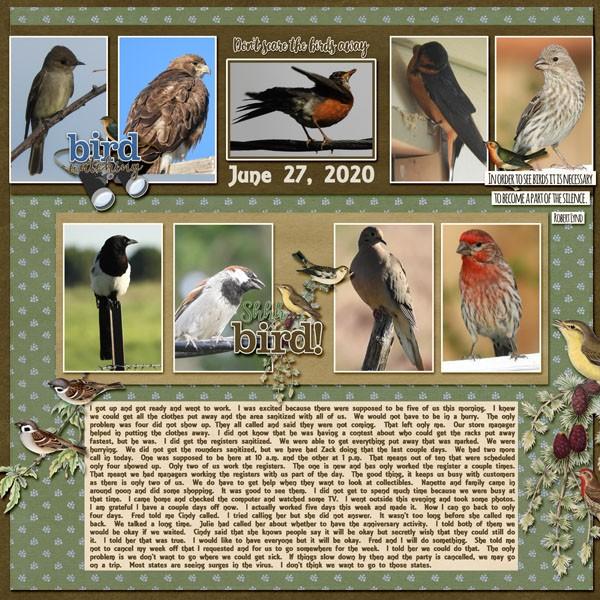 6-June 27, 2020 Bird Watcher.jpg