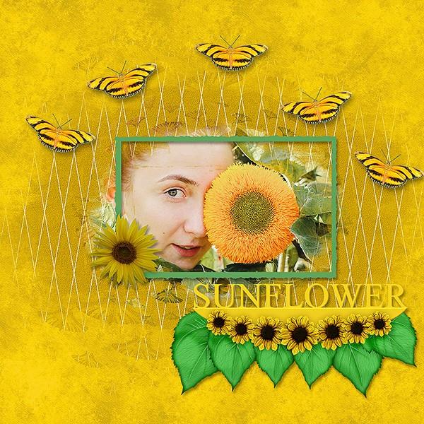Sunflower_ollitko.jpg