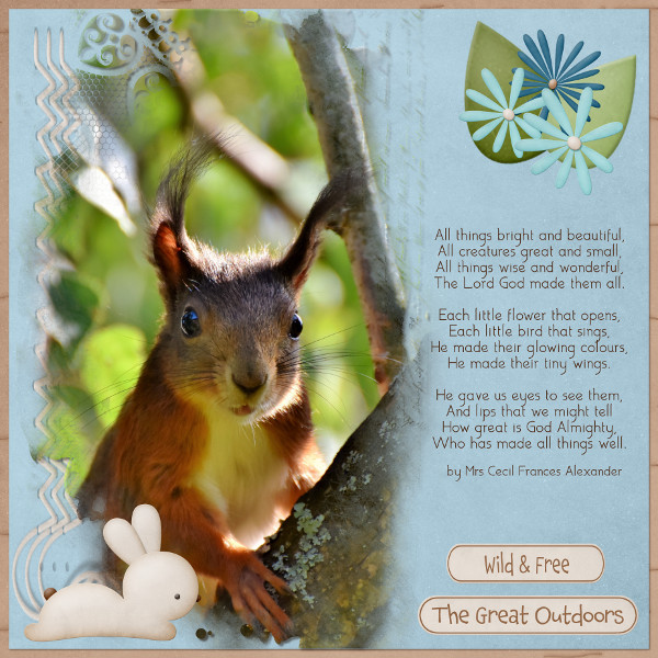 All Creatures Great And Small.jpg