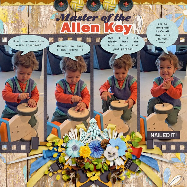 Master of the Allen Key.jpg