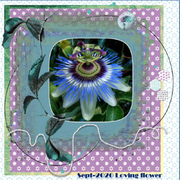Sept.2020 Mask-Loving flower....jpg