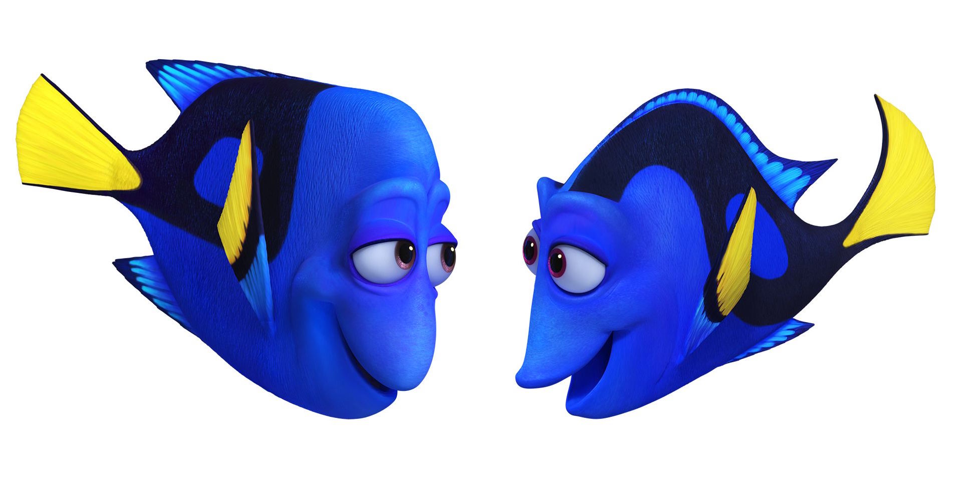 Finding-Dory-Jenny-and-Charlie_Pixar-Post.jpg