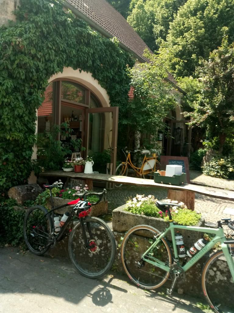 Bike_001_9.jpg