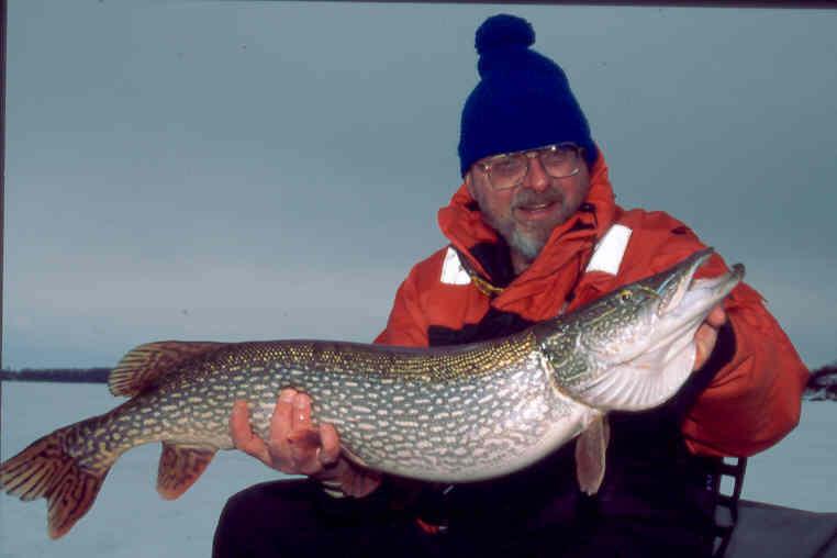 fish2-Mar2002.jpg