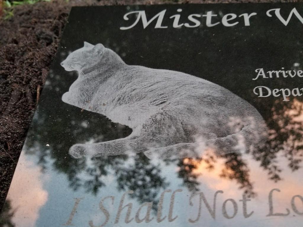 [Mister1]