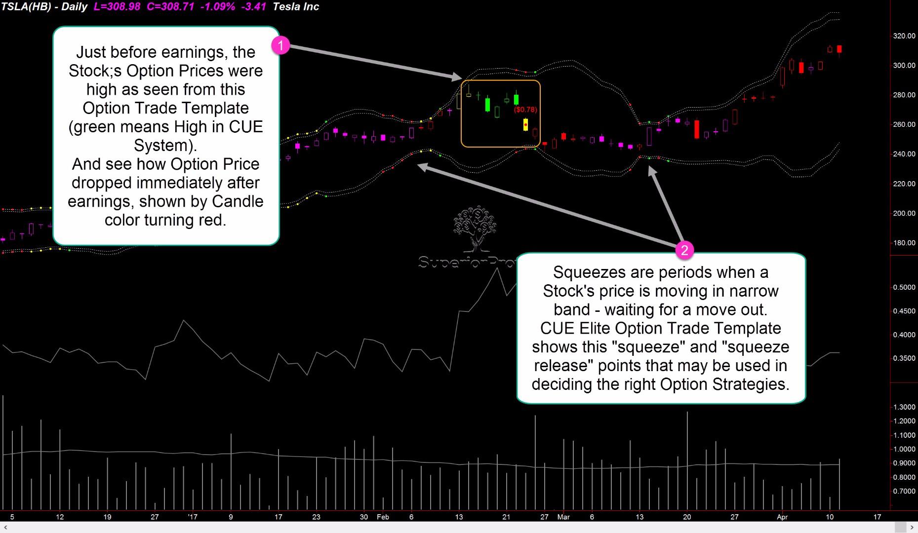 CUE Elite for TradeStation - Option Trade Template.jpg