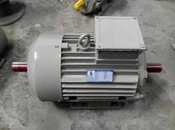 double-shaft-motors-133.jpg