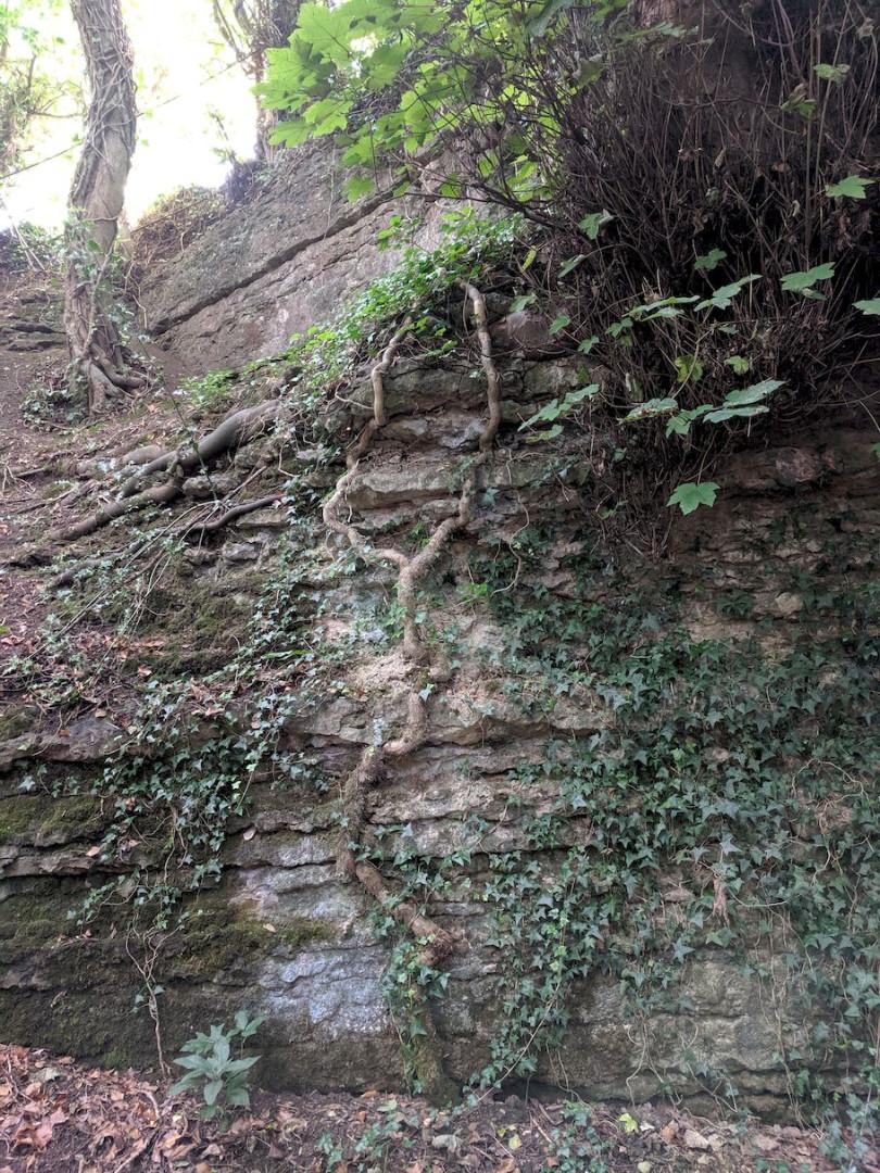 Kiln quarry1.jpg