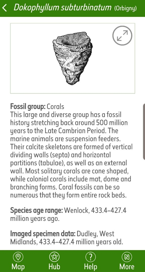 Screenshot_20190918-095140_Fossil Explorer.jpg