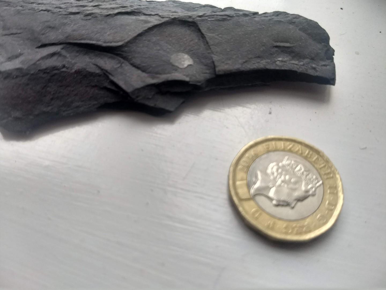 Llanfawr quarry 1a.jpg