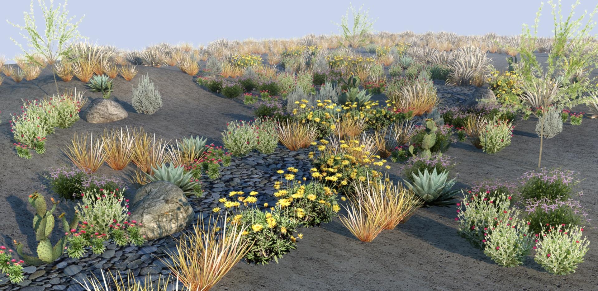 riparian landscape.jpg