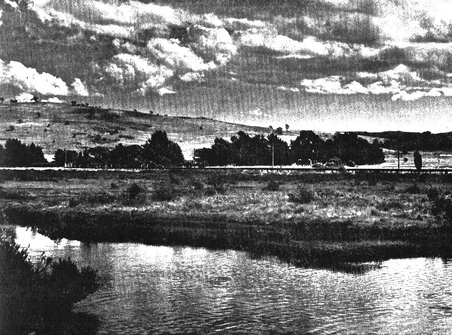 ROSSBridge-Festival-Viaduct1970-23Apr2016.jpg