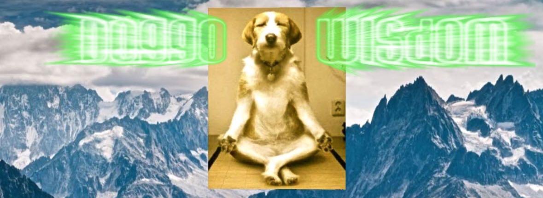 JaqiART-Doggo-Banner-26May2019.jpg