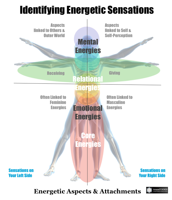 SSHP Infographic Core Energies M&F.jpg