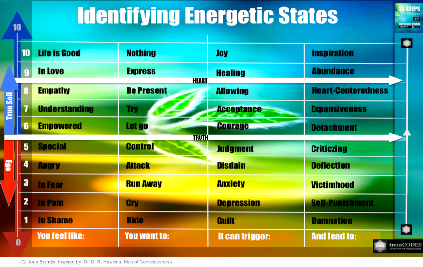 SSHP Infographic Vibrational Scale Truth.png