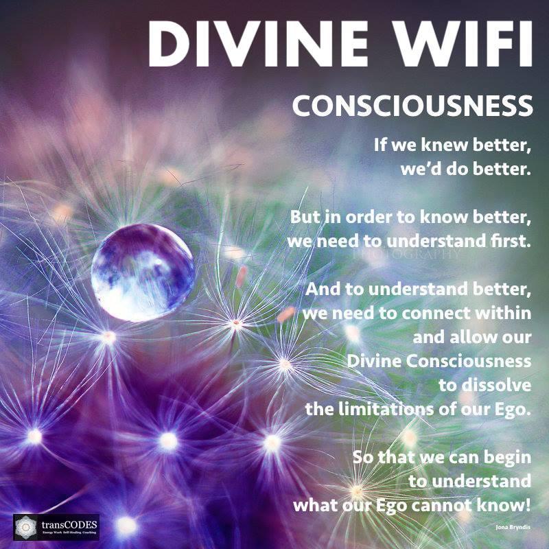 Quote Consciousness - Divine WIFI.jpg