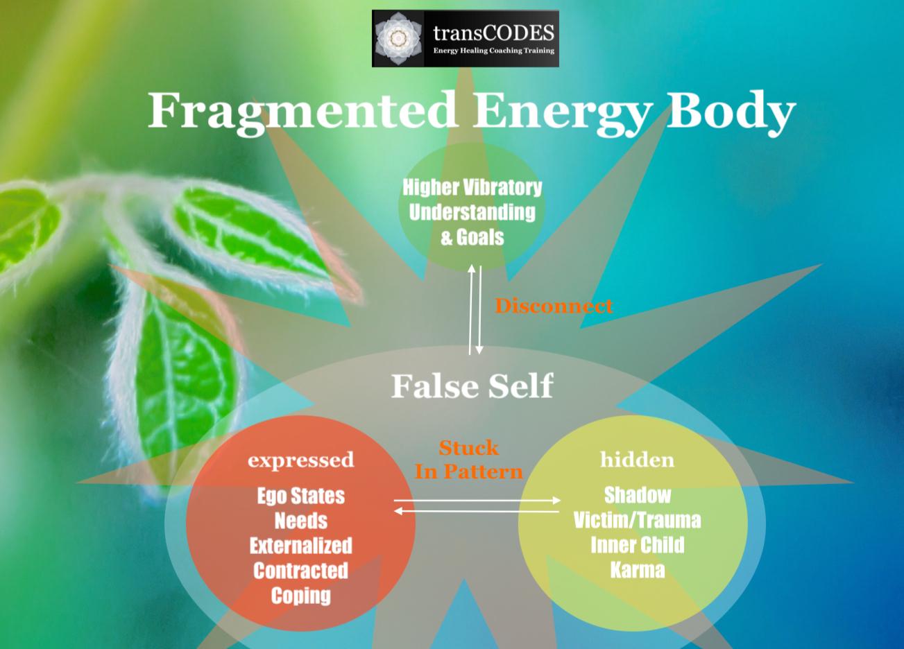 sshp inforgraphic fragmented energy body.jpg