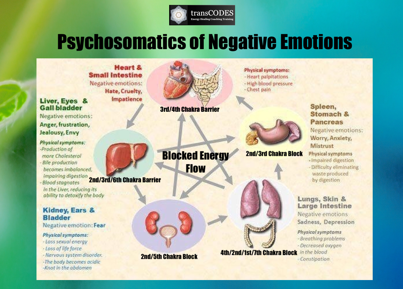 SSHP Infographic Psychosomatics Negative Emotions.jpg