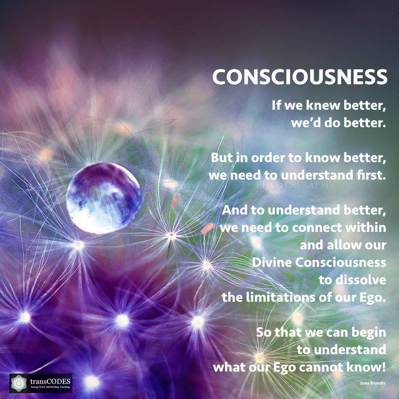 Quote - Divine consciousness.jpg