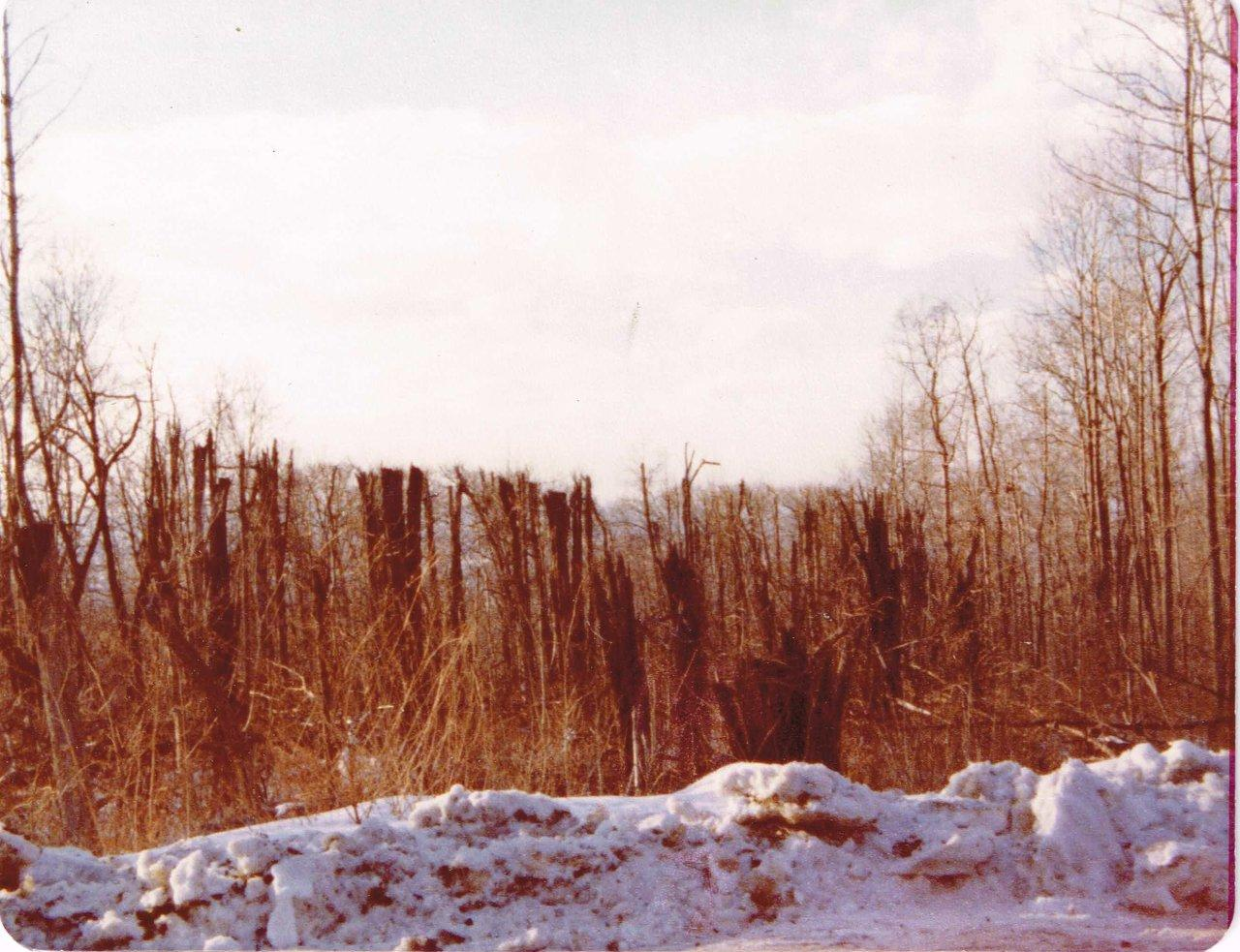 Feb 1977-west view-incoming direction.jpg