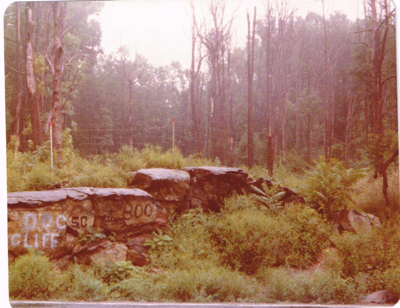 Aug 1977-east view - impact rock and hillside.jpg