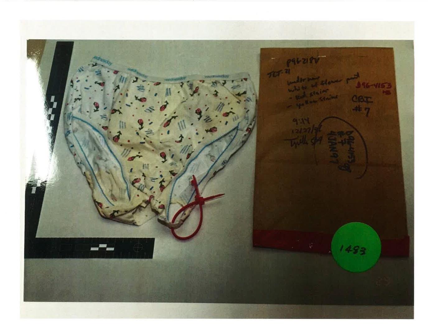 panties showing area of cutout.jpg
