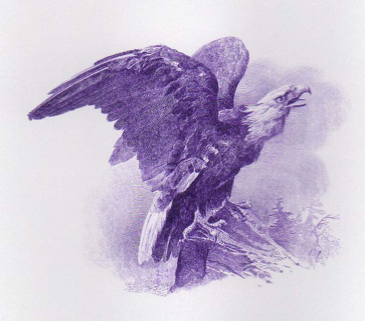 Baril purple eagle cu.jpg