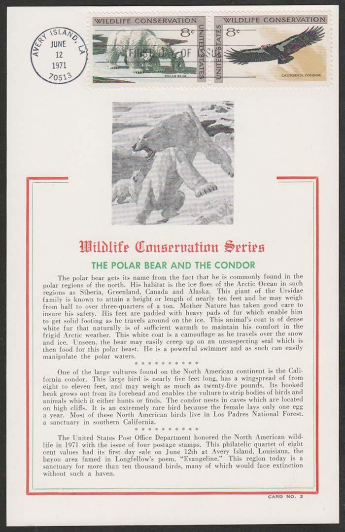 Polar bear maximum card.jpg