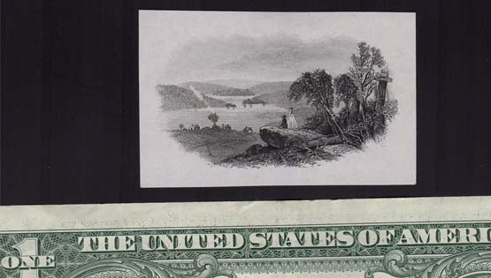 Tiny landscape with dollar.jpg