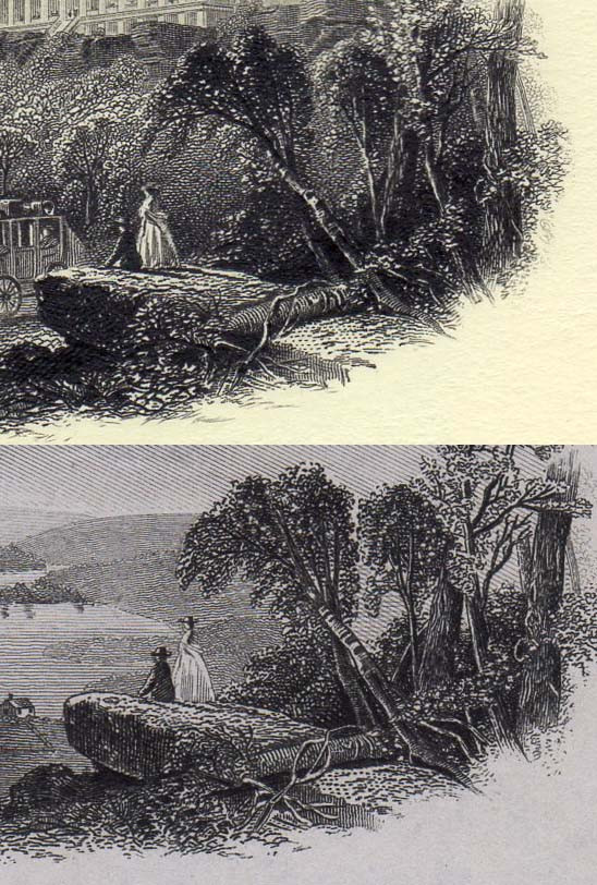 Tiny landscape comparison.jpg