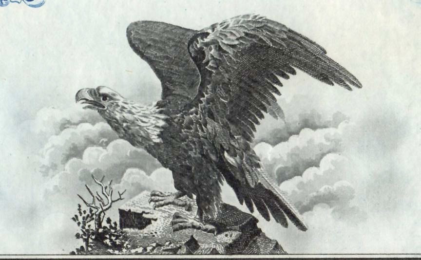 American Fruit eagle.jpg