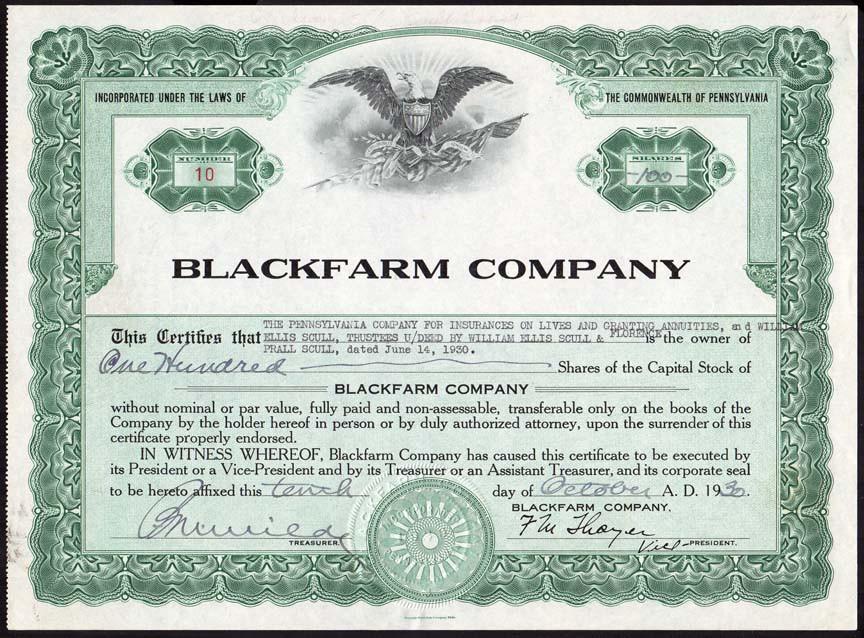 Blackfarm Company stock.jpg