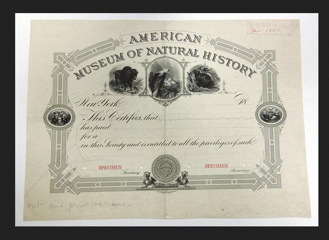 Am History Museum membership cert.png
