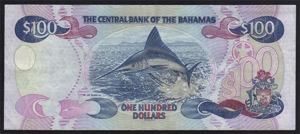 bahamas_p67_rear.jpg