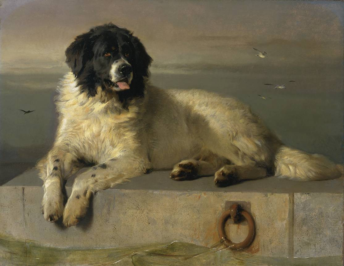 A Distinguished Member of the Humane Society.1838.jpg