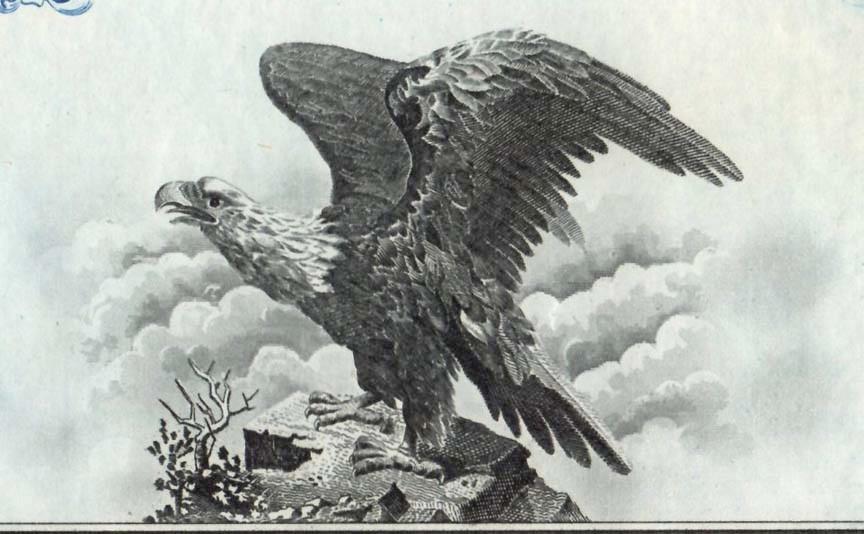 American Fruit eagle EAW.jpg