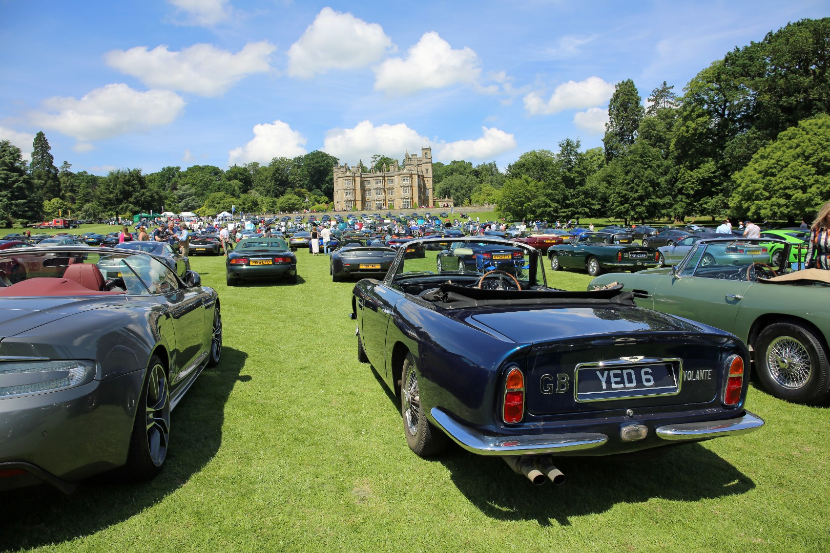 180603_Englefield Concours_Field of Astons_IanKendall.jpg