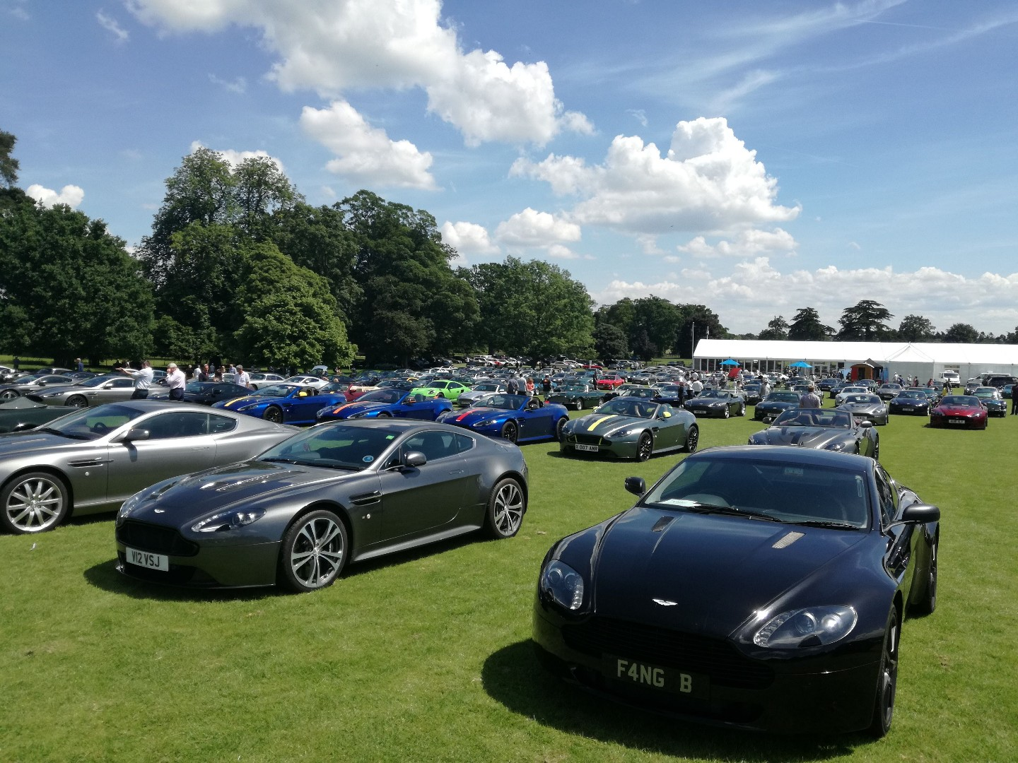 180603_Englefield Concours_Astons2_Tania Reed__130020.jpg