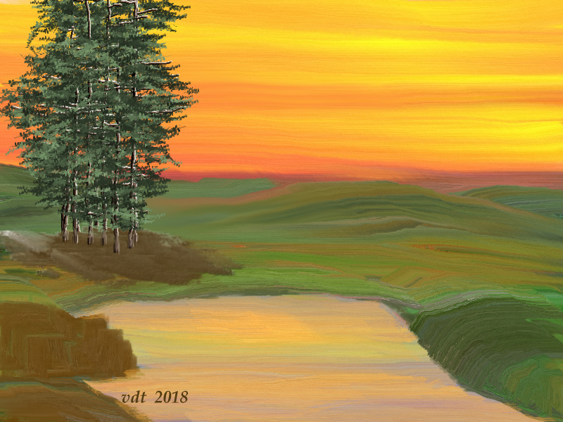 Pine tree in the sunset.jpg