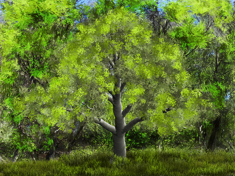 TreeStudio_American Beech 1.jpg
