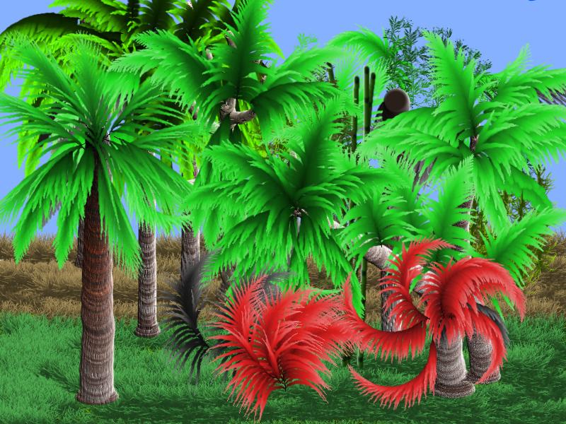 Palm tree forest.jpg
