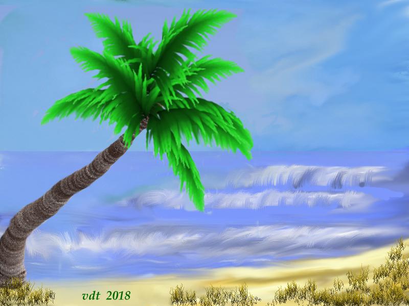 palm on the beach.jpg