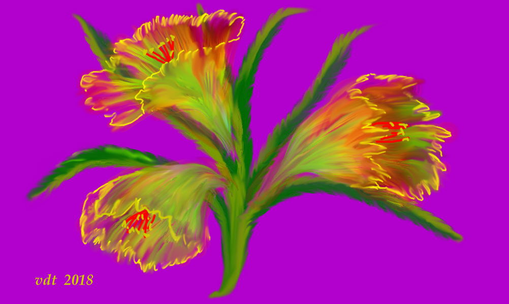 abstract lilies.jpg