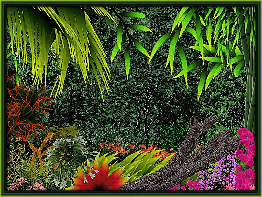 Foliage& Plants.jpg
