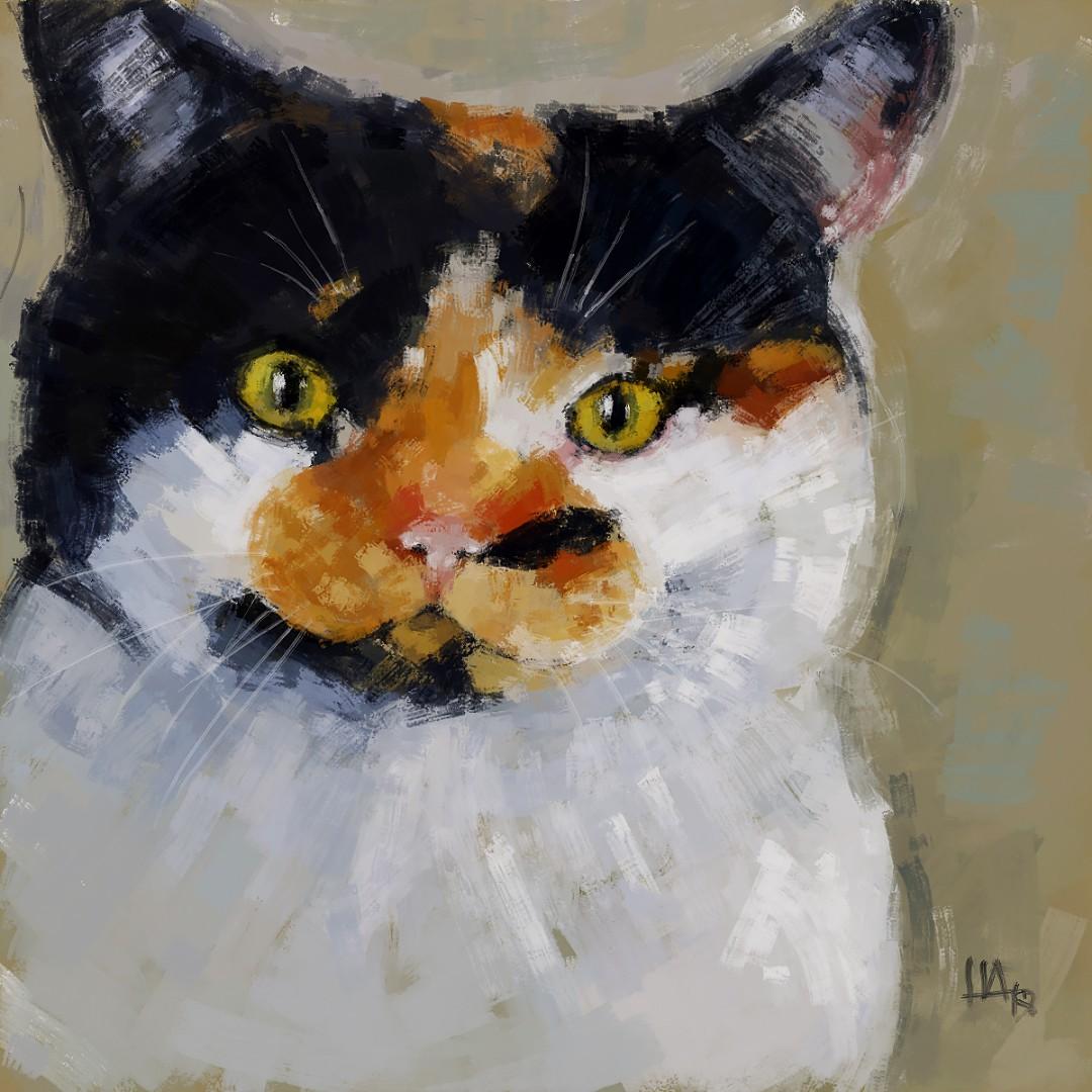 cat_final.jpg